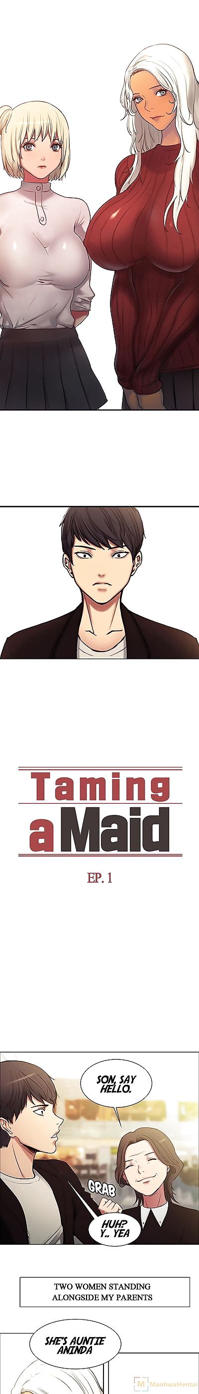Serious Taming a..